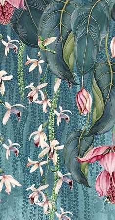 Trailing Orchid Wallpaper W7334-01 from the FOLIUM Collection