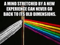 a mind stretched by a new experience can never go back to its old dimensions