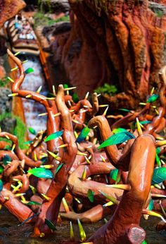 Splash Mountain, Magic Kingdom, Walt Disney World