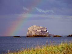 The Bass Rock (Scotland)  Taken by Aurora Leonor Jimenez Lorente