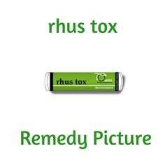 Rhus tox is a remedy made from a plant with the peculiarity of being more poisonous during the night; and bursting into flower in summer when the sun is not shining. This matches its remedy picture of aggravations from damp weather, and night time. Rhus Tox is mainly used in home prescribing for musculoskeletal and skin conditions. It is useful for the symptoms of back aches, sprains and strains and itchy skin conditions.