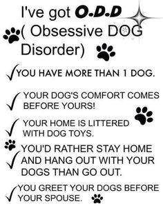 I've got O. (Obsessive Dog Disorder) You have more than one dog. Your dog's comfort comes before yours! Your home is littered with dog toys. You'd rather stay home and hang out with your dogs than go out. You greet your dogs before your spouse. I Love Dogs, Puppy Love, Cute Dogs, Fun Dog, Big Dogs, Crazy Dog Lady, Dog Rules, Animal Quotes, Puppy Quotes