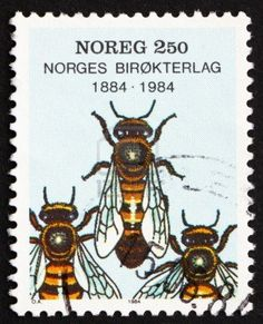 Bees - Honey Bee Stamps, Beekeeping, Apiculture - Stamp Community Forum - Page 3 I Love Bees, Honey Bee Stamps, Postage Stamp Art, Stamp Printing, Bee Art, Bee Design, Save The Bees, Bee Happy, Bees Knees