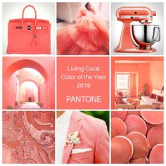 Pantone Color of the Year 2019 Fashion moodboard Coral Pantone, Pantone Color, Pantone Cmyk, Coral Colour Palette, Coral Color, Coral Pink, Coral Fashion, Women's Fashion, Color Collage