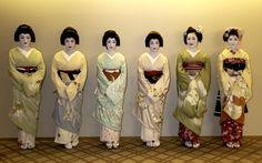 Maiko and Geisha(  Geiko ) Kyoto Japan | by juanalves46