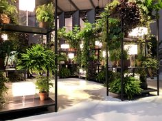 Thanksgiving dinner made easy - The Martha's Vineyard Times Green Interior Design, Tropical Landscaping, Plant Design, Signs, Indoor Plants, Landscape Design, Make It Simple, Pergola, Exterior