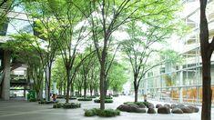 Billedresultat for urban design plaza tokyo Urban Garden Design, Japanese Garden Design, Japanese Landscape, Garden Landscape Design, Urban Design, Landscape Plaza, Landscape Architecture, Minimalist Garden, Modern Landscaping