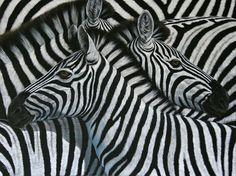 stripes Tangled, Stripes, Draw, Black And White, Animals, Black White, Animales, Blanco Y Negro, Rapunzel