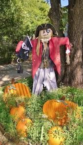 Image result for pirate scarecrows