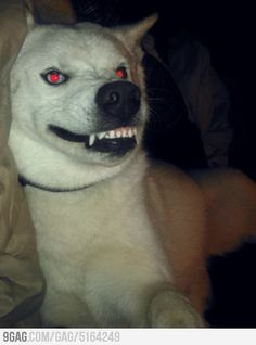 creepy :D