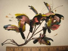 Vintage Feather Millinery 6 Butterfly Hat Trim 5017 | eBay