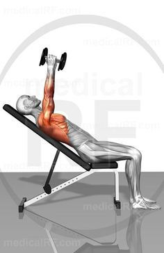 Dumbbell incline fly exercises (Part 1 of 2)