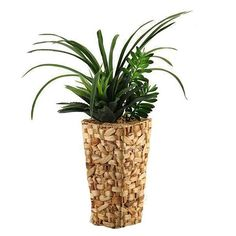 D&W Silks Areca Grass and Succulents in Tall Square Banana Leaf Basket