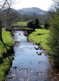 Tipperary, Ireland. want to go back to visit my family. i love this beautiful and forever GREEN country.