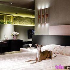 #tresarquitetura #interiordesign #dog  Três Arquitetura (@tresarquitetura)