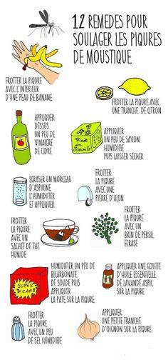 12 Remèdes Super Efficaces Pour Soulager une Piqûre de Moustique Instantanément.