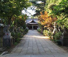 画像 Ibaraki, Sidewalk, Places, Abundance, Side Walkway, Walkway, Walkways, Lugares, Pavement