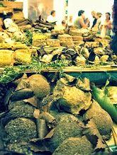 #cheese2013 #bra #slowfood