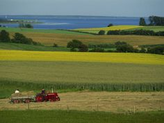 Tractor in Field at Harvest Time, East of Faborg, Funen Island, Denmark, Scandinavia, Europe Photographic Print