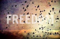 Freedom. -
