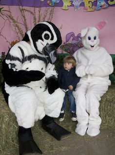 Stuck between a sketchy penguin and a funny bunny.