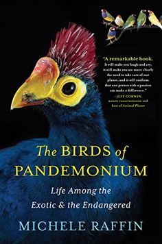 The Birds of Pandemonium by Michele Raffin http://www.amazon.com/dp/1616201363/ref=cm_sw_r_pi_dp_jt69tb1J069X8 (Not all books have to be fiction! Smiling. Here's one on birds)