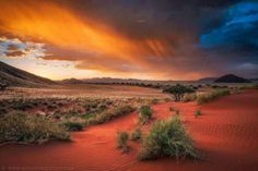 Flaming Namibian Rainfall by markdumbleton sunset Africa Drifters Desert Lodge Landscape Namib Rand Conservancy Namibia Scenic Storm arid cloud Beautiful World, Beautiful Places, Beautiful Pictures, Beautiful Sky, Amazing Photos, Landscape Photography, Nature Photography, Land Of The Brave, Namibia