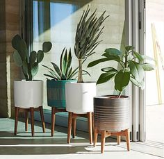 I think that a West Elm catalog came to my house and that's how I saw these planters. Oooooooh: That aqua! And that yellow! (It still seems relatively rare to find these kinds of items in color colors.) Alas, it looks like the yellow sold out in a hot minute. These are not inexpensive, but …