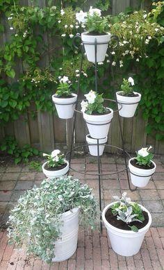 witte potten - witte bloemen - grijsgroen blad
