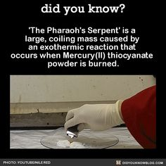 'The Pharaoh's Serpent' is a large, coiling mass caused by an exothermic reaction that occurs when Mercury(II) thiocyanate powder is burned.  Source