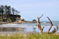 Coos Bay is surrounded by the Pacific shoreline with its beautiful dunes and lovely beaches, plan your vacation today! Cascadia Subduction Zone, Oregon Beaches, United States Geological Survey, Coos Bay, Travel Destinations Beach, State Of Oregon, Beach Town, Parks And Recreation, Hiking Trails