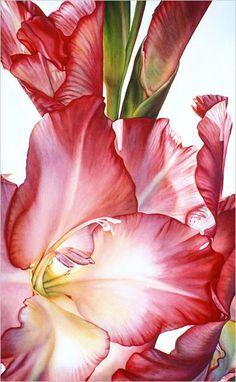 Lisa Lopuck Watercolors - Incredible Color, Unbelievable Realism, Infitite Depth