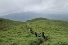 Chembra Peak is the highest peak in Wayanad, at 2,100 metres (6,900 ft) above sea level. It is located near the town of Meppady and is 8 km south of Kalpetta.    It is part of the Wayanad hill ranges in Western Ghats, adjoining the Nilgiri Hills in Tamilnadu and Vellarimala in Kozhikode district in Kerala