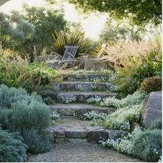 There are lots of affordable backyard landscaping ideas you can look into. For a backyard landscape upgrade, you don't need to spend so much cash to get an outdoor look that is easy and affordable. Outdoor, Hardscape, Landscape, Landscape Design, Front Yard Landscaping, Garden Paths, Garden Steps, Garden Design, Cottage Garden