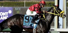 Trinniberg wins the Breeders' Cup Sprint.  I love this horse!