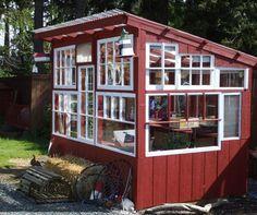 salvaged window greenhouse