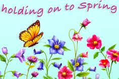 Spring Flowers and Butterflies by Rossenrode Ricochet on @creativemarket