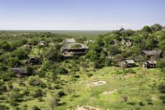 WorldGuide's top 10 Safari Lodges in Africa - Best Places to Be - WorldGuide Recommends - Travel - Ongava Lodge, Namibia Private Games, Game Reserve, Family Adventure, Africa Travel, Black House, Lodges, Safari, Maine, Swimming Pools