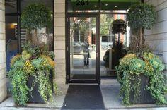 Autumn Topiary Urns