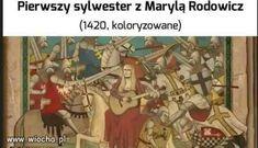 Wtf Funny, Hilarious, Polish Memes, Quality Memes, History Memes, Hetalia, Jokes, Lol, Comics