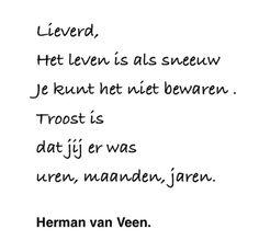 Herman van Veen
