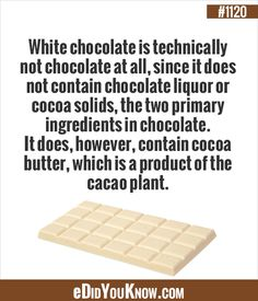 eDidYouKnow.com ►  White chocolate is technically not chocolate at all, since it does not contain chocolate liquor or cocoa solids, the two primary ingredients in chocolate. It does, however, contain cocoa butter, which is a product of the cacao plant. Wtf Fun Facts, Random Facts, True Facts, Random Stuff, Chocolate Liquor, White Chocolate, Good To Know, Did You Know, Ate Too Much