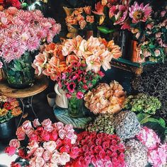 Flower market beauty