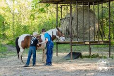 Detour for a Service Project & Some Horses - Serving and having fun at the same time makes our family happy. We were so lucky to experience these opportunities! Take a look at this awesome adventure!