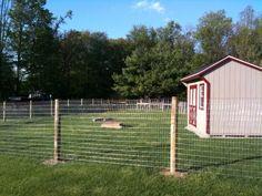 goat fence