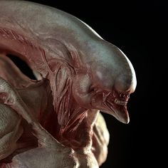 Albino Xenomorph redesign At first,i just want to create an alien concept sculpt but then i've decided to go all the way with it . Also,this is my first time using Marmoset Toolbag ,pretty good engine for real time render . Thanks for Watching Aliens, Horror Pictures, Horror Pics, Monster Co, Giger Alien, Mythological Monsters, Alien Plants, Giger Art, Alien Isolation