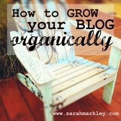 I enjoyed Sarah's tips on how to grow your BLOG organically.