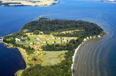 Die Insel Vilm ist heute ein Naturreservat. Mehr als 400 Pflanzenarten sind belegt, 65 Brutvogel- und sogar 48 Schneckenarten.