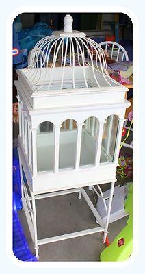 """50.5"""" Gothic Terrarium Free Standing Display Case"""