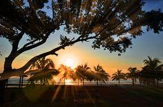 Sunrise, Ray, Playa, Paisaje